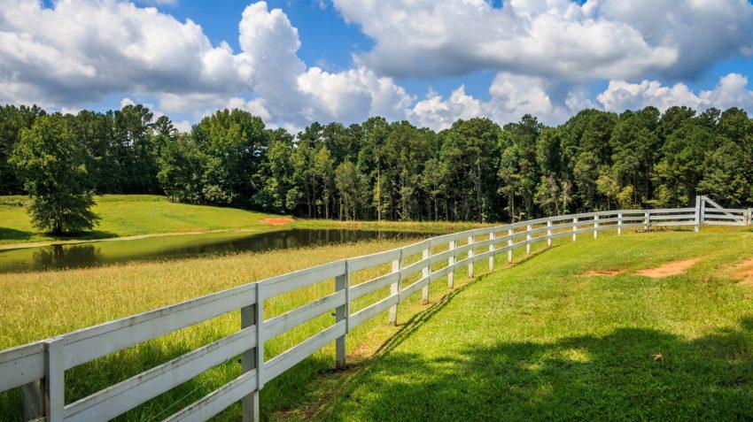 property line survey
